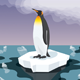 Penguin With Plastic Garbage In The Water - GraphicRiver Item for Sale
