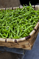 Green peppers in a wicker basket - PhotoDune Item for Sale