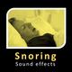 Snoring Sounds - AudioJungle Item for Sale