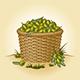 Retro Basket Of Olives - GraphicRiver Item for Sale