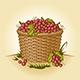 Retro Basket Of Grapes - GraphicRiver Item for Sale
