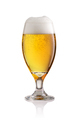 Beer glass isolated on white background - PhotoDune Item for Sale