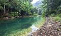 Bladen River and Dense Jungle in Belize - PhotoDune Item for Sale