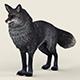 Game Ready Black Fox - 3DOcean Item for Sale