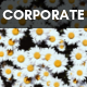 A Bright Day Corporate (Inspiring) - AudioJungle Item for Sale