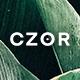 CZOR - Minimalist Shopify Theme - ThemeForest Item for Sale