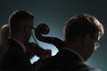 Professional musicians playing a classical music concert - PhotoDune Item for Sale