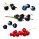 Berries Set Realistic Illustration - GraphicRiver Item for Sale