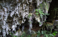 Rock Formations in a Cave in Belize - PhotoDune Item for Sale