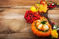 Fall pumpkins, rowan berries wreath, copy space - PhotoDune Item for Sale