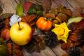 Fall pumpkin, apple and yellow roses decor - PhotoDune Item for Sale