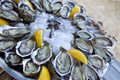 Oysters and lemon on a plate - PhotoDune Item for Sale