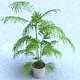 Pot Plants_001 - 3DOcean Item for Sale