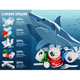 Vector Environment Pollution Illustration and White Shark - GraphicRiver Item for Sale