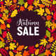 Autumn Leaves Composition - GraphicRiver Item for Sale
