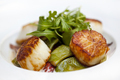Scallops peppers and sauce on a plate - PhotoDune Item for Sale