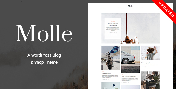 Molle - A Responsive Blog & Shop WordPress Theme