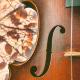 Autumn Rain Cello Soundscape
