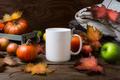 White coffee mug mockup with fall leaves, pumpkins - PhotoDune Item for Sale