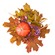 Autumn flower arrangement with a Pumpkin - 3DOcean Item for Sale