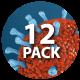 Macro Bacterium 12-Pack - VideoHive Item for Sale