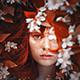 Autumn Photoshop Action - GraphicRiver Item for Sale