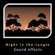 Night in the Jungle