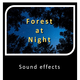 Forest at Night Sounds