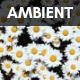 Ambient Choir