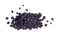 Dried aronia berries - PhotoDune Item for Sale