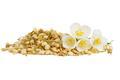 Fresh and dried jasmine flowers - PhotoDune Item for Sale