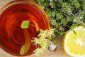 Cup of herbal tea with lemon and thyme - PhotoDune Item for Sale