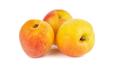 Ripe apricots - PhotoDune Item for Sale