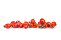 Fresh red hips berries - PhotoDune Item for Sale
