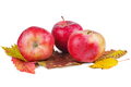 Three red apples over autumn leaves - PhotoDune Item for Sale