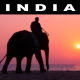 India - AudioJungle Item for Sale