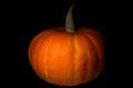 Pumpkin on black background - PhotoDune Item for Sale