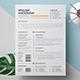 Professional Resume / CV - GraphicRiver Item for Sale