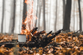 Bonfire in the forest in the evening - PhotoDune Item for Sale