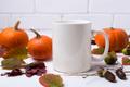 White coffee mug mockup with pumpkins, acorns - PhotoDune Item for Sale