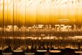 Night Light Blur Bokeh, Defocused Background - PhotoDune Item for Sale