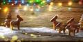 Christmas ginger bread - PhotoDune Item for Sale