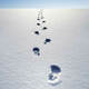 Footstep in the Snow - AudioJungle Item for Sale