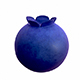 Blueberry - 3DOcean Item for Sale