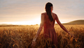 Carefree woman strolling in the wheat field - PhotoDune Item for Sale