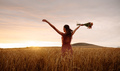 nature; free; freedom; farm; woman; relaxation; strolling; dreamy; sunset; backlit; summer - PhotoDune Item for Sale