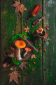 Red poisonous mushrooms on a wooden table with moss and leaves. Autumn flat lay with copy space - PhotoDune Item for Sale