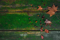 Old wooden table with moss and scattered fallen leaves. Autumn texture with copy space - PhotoDune Item for Sale