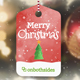 Christmas Watercolored Slideshow - VideoHive Item for Sale
