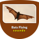 Bats Flying Sounds